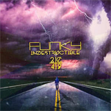 Funky - Indestructible